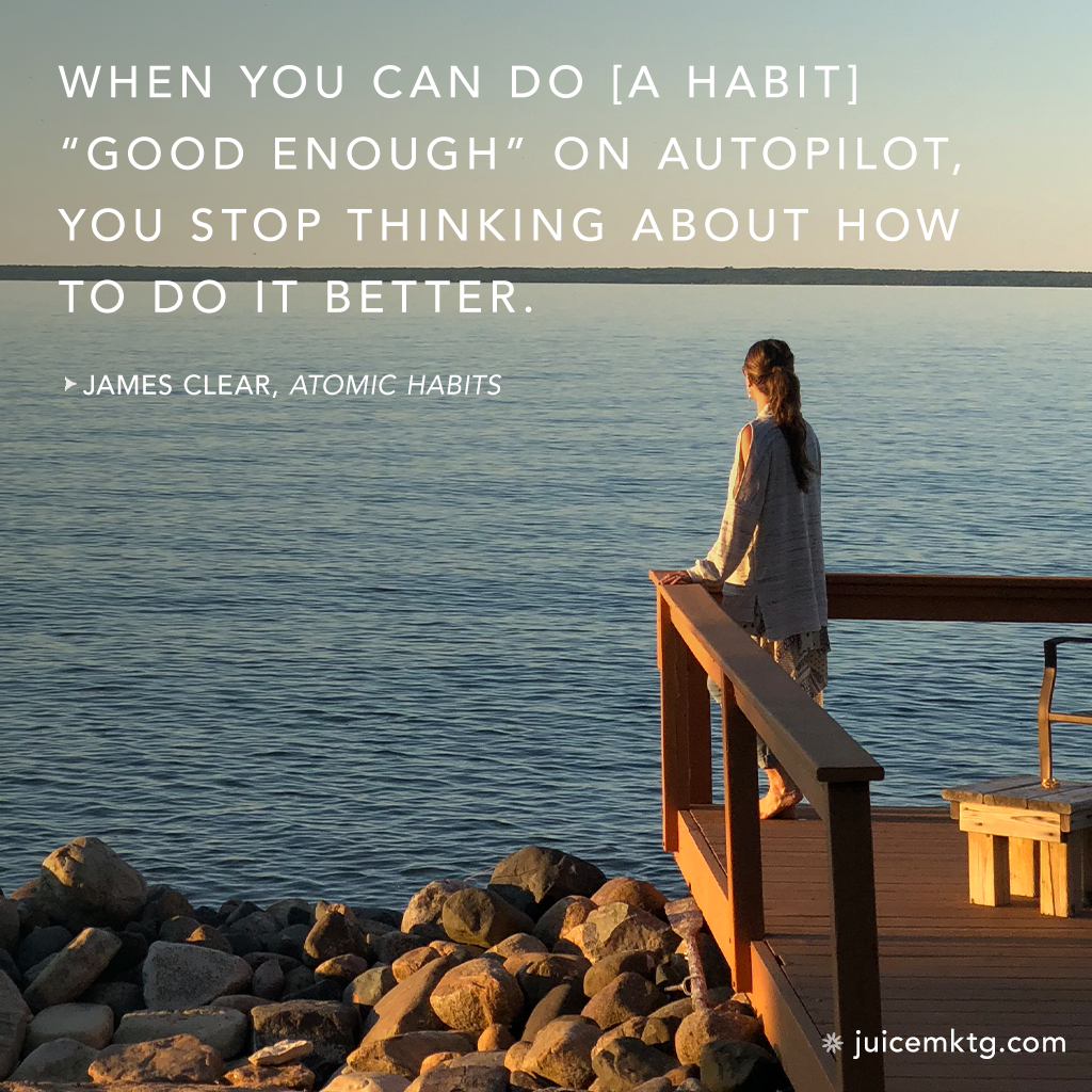Atomic Habit Quote 14