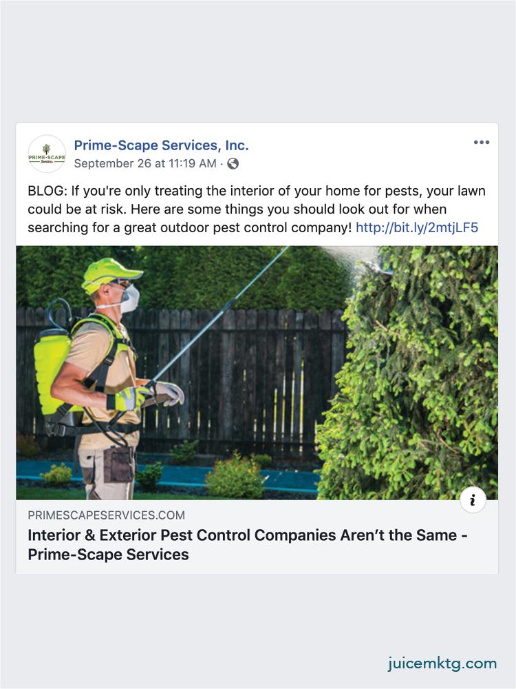 Prime-Scape Services - Blog